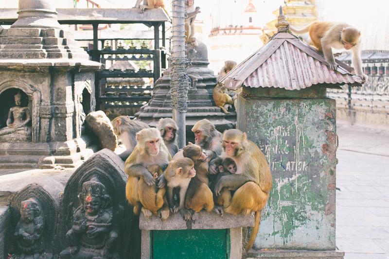 Nepal-Kathmandu-Photographer